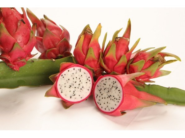 Lake Atitlan - Dragon Fruit